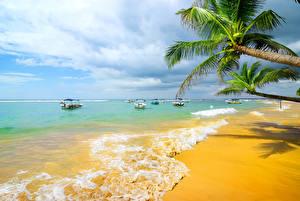Фотографии Побережье Тропики Море Пальмы Пляж Природа
