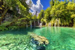 Картинки Хорватия Парки Озеро Водопады Деревья Plitvice Lakes National Park Природа