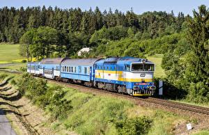 Фото Чехия Железные дороги Поезда Леса Локомотив Природа