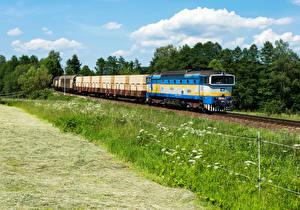 Фотографии Чехия Железные дороги Поезда Локомотив Трава