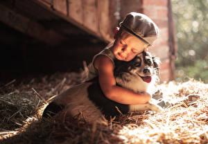 Картинка Собаки Мальчики Сено Солома Дети