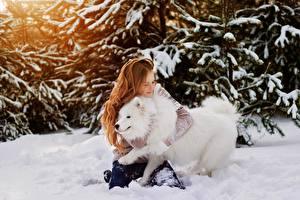 Фото Собаки Рыжая Снег Обнимает молодая женщина Животные