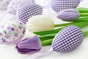 Картинка Пасха Тюльпаны Яйца Цветы