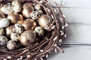 Картинка Яйца Золотой Гнездо