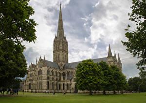 Фотография Англия Храмы Церковь Деревья Газон Salisbury Cathedral Города