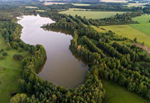 Фотографии Эстония Озеро Поля Леса Сверху Lake Kuuni Природа