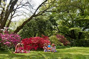 Фото Германия Парки Рододендрон Кусты Кукла Девочки Трава Деревья Grugapark Essen Природа