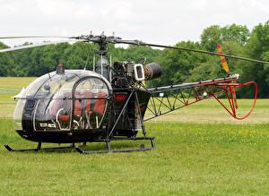 Фотография Вертолеты Трава Sud SA-313B Alouette II