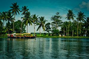 Обои Индия Реки Речные суда Лодки Пальмы Alappuzha Kerala Природа картинки