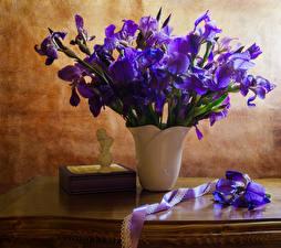 Фотографии Ирисы Ваза Фиолетовый Ленточка