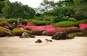 Фотография Япония Киото Сады Камень Кусты Karesansui Природа