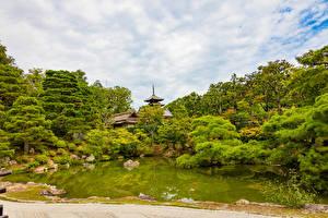 Картинки Япония Киото Парки Пруд Деревья Природа