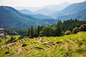 Фотографии Япония Горы Леса Поля Kiwa Kumano Mie Природа