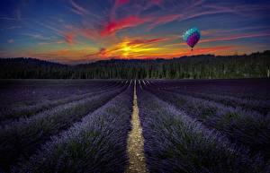 Картинки Лаванда Поля Рассветы и закаты Пейзаж Воздушный шар Природа