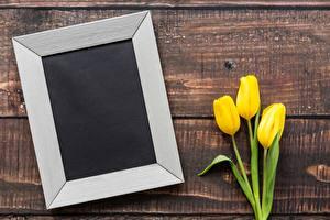 Обои 8 марта Тюльпаны Шаблон поздравительной открытки Цветы