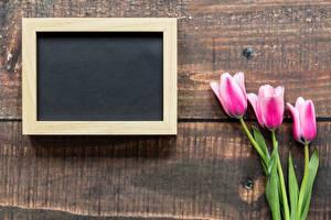 Картинки 8 марта Тюльпаны Шаблон поздравительной открытки Цветы