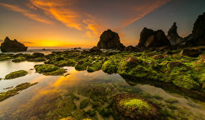 Фото Португалия Берег Рассветы и закаты Камень Скала Мох Adraga