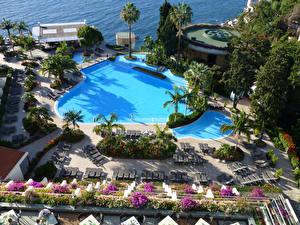 Картинки Португалия Курорты Бассейны Лежаки Пальма Madeira город