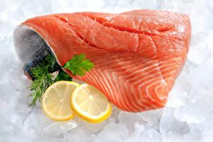 Картинка Морепродукты Рыба Лимоны Лососи Лед Продукты питания