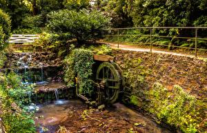 Фотография Испания Водопады Мох Кусты Gijon Asturias