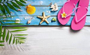 Картинка Лето Ракушки Морские звезды Вьетнамки Доски