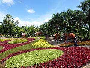 Фото Таиланд Сады Тигры Скульптуры Дизайн Пальмы Nong Nooch Tropical Botanical Garden Природа