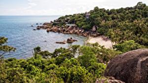 Картинки Таиланд Тропики Побережье Камень Пляж Пальмы Ko Samui Природа
