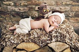 Фото Игрушки Совы Младенцы Спящий Дети