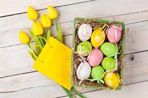 Картинки Тюльпаны Пасха Яйца