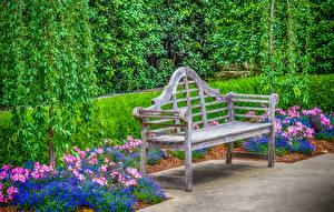 Фото Штаты Сады Скамья Dallas Arboretum Природа