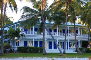 Фото США Дома Флорида Особняк Пальмы Islamorada
