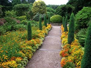 Обои Великобритания Сады Бархатцы Кустов Деревья Biddulph Grange Garden Природа