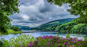 Фотографии Великобритания Пейзаж Парки Речка Мосты Леса Холмы HDRI Peak District National Park Природа