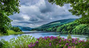 Фотографии Великобритания Пейзаж Парки Речка Мосты Лес Холмы HDRI Peak District National Park Природа