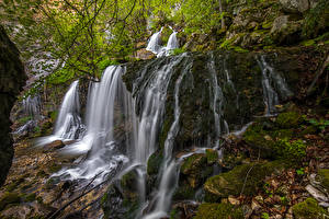 Фотографии Водопады Мох Doriaz Waterfall