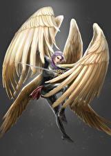 Фотографии Ангелы Воины Крылья Девушки