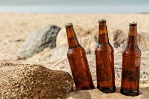 Картинки Пиво Камни Бутылка Три Песка Пища