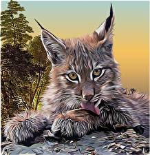 Обои Большие кошки Рыси Рисованные Смотрит Усы Вибриссы Животные