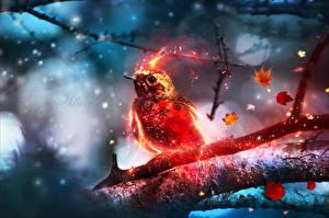 Фотография Птицы Волшебные животные Ветвь
