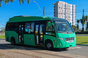 Фото Автобус Салатовый 2017 Volare Access BYD Авто