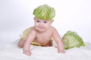 Фотография Капуста Оригинальные Белый фон Грудной ребёнок