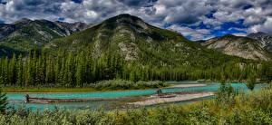 Фотографии Канада Парки Горы Озеро Леса Пейзаж Банф Bow River