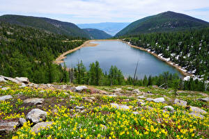 Фотографии Канада Пейзаж Озеро Леса Холмы Carlton Lake
