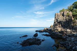 Фотография Дания Побережье Море Скала Bornholm