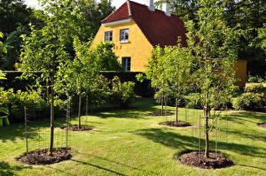 Фотографии Дания Дома Деревья Газон Bornholm Города