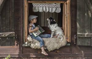 Обои Собака Мальчик Сидит 2 Окна ребёнок Животные