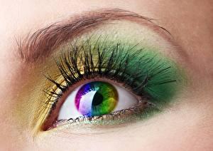 Обои Глаза Крупным планом Ресница Разноцветные