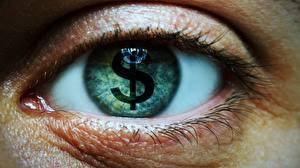 Фото Глаза Доллары Крупным планом Деньги