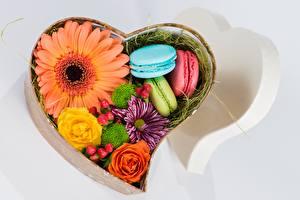 Картинки Герберы Сердечко Коробка Макарон Цветы Еда
