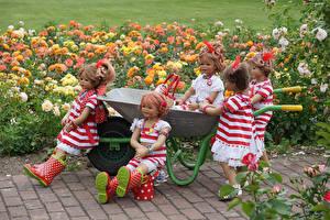 Фотографии Германия Парки Розы Кукла Девочки Платье Сапоги Grugapark Essen
